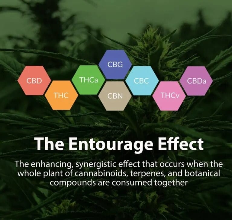 The Entourage Effect
