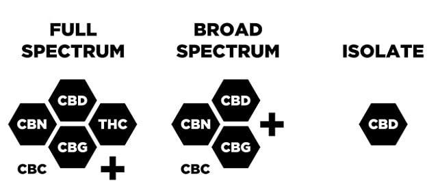 Differences between Full Spectrum CBD Broad Spectrum CBD and CBD Isolate