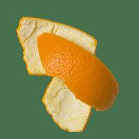 Photo of Orange Peel