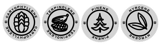 Caryophyllene Terpene Icon, Terpinolene Terpene Icon, Pinene Terpene Icon, and Myrcene Terpene Icon