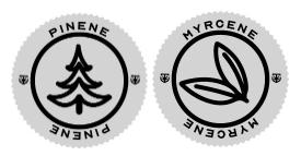Pinene Terpene Icon and Myroene Terpene Icon