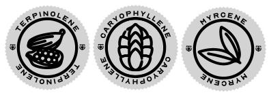 Terpinolene Terpene Icon, Caryophyllene Terpene Icon, and Myroene Terpene Icon