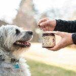 CBD Dog Chews by R+R Medicinals _ Giving CBD Treat to a Dog