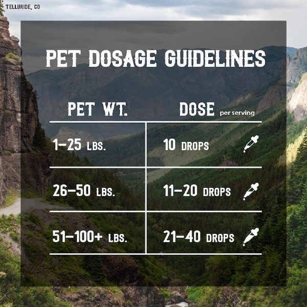 Pet CBD Dosage Guidelines - The Mass Apothecary CBD Store