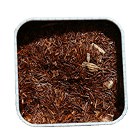 Photo of Red Rooibos