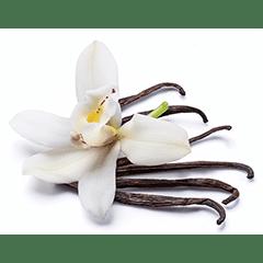 Photo of Vanilla Bean