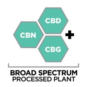 Buy Broad Spectrum CBD Products Online at The Mass Apothecary CBD Store