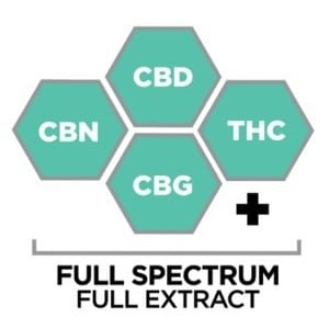 Buy Full Spectrum CBD Products Online at The Mass Apothecary CBD Store