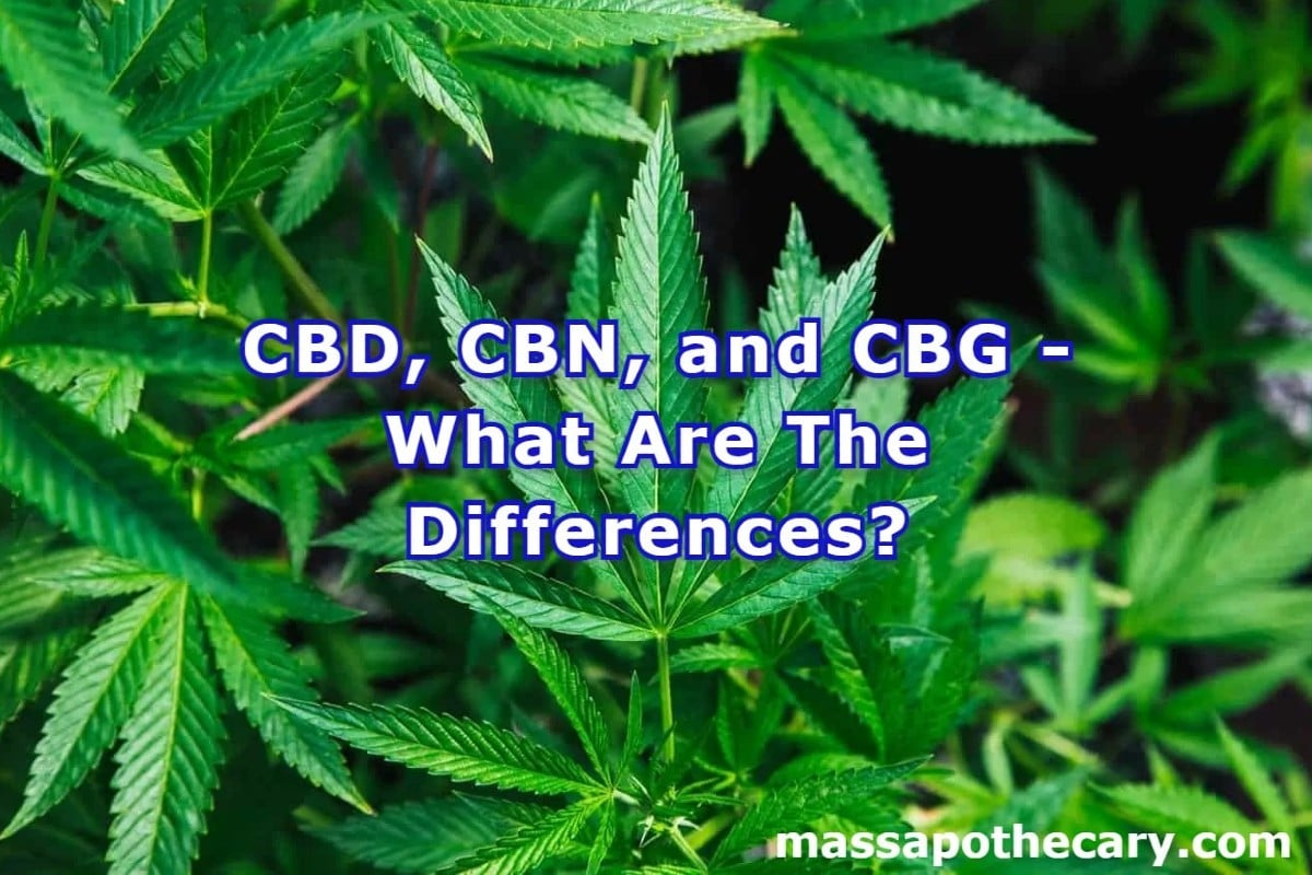 CBD, CBN, and CBG - What Are The Differences - The Mass Apothecary CBD Store (1)